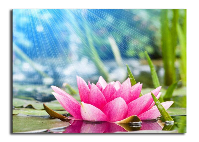 Pink Lotus 5D Diamond Painting Kit