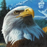 Majestic Eagle 5D Diamond Painting Kit
