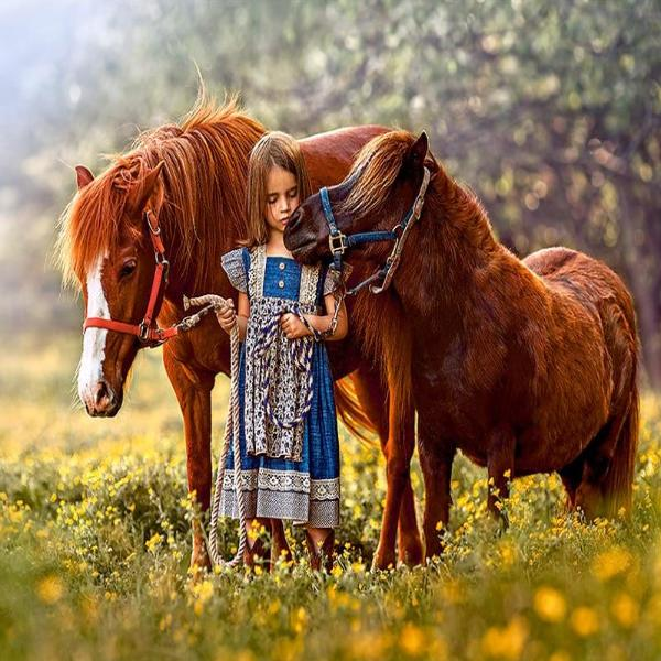 Girl And Her Ponies 5D Diamond Painting Kit