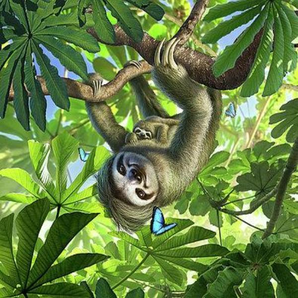 Hang Out Sloths 5D Diamond Painting Kit