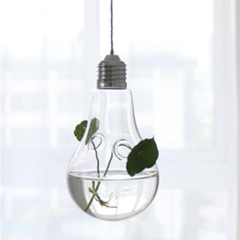 Hanging Transparent Glass Globe (4 shapes)