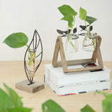 Small Wood and Glass Desktop Planter (4 styles)