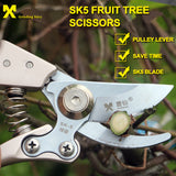 High Carbon Steel Tree Pruning Scissors