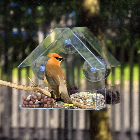 Transparent Plastic House-Shaped Bird Feeder