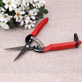 Pruning Plants, Fruits, and Flowers Scissors