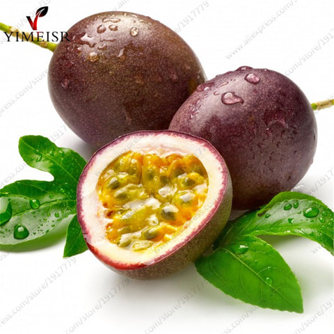 Organic Purple Passion Fruit  Seeds