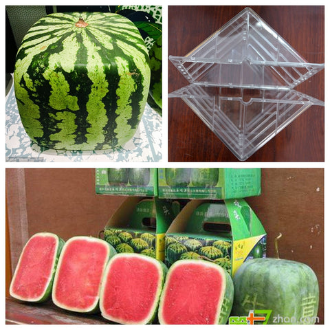Watermelon Shaping Square / Heart Growing Mold