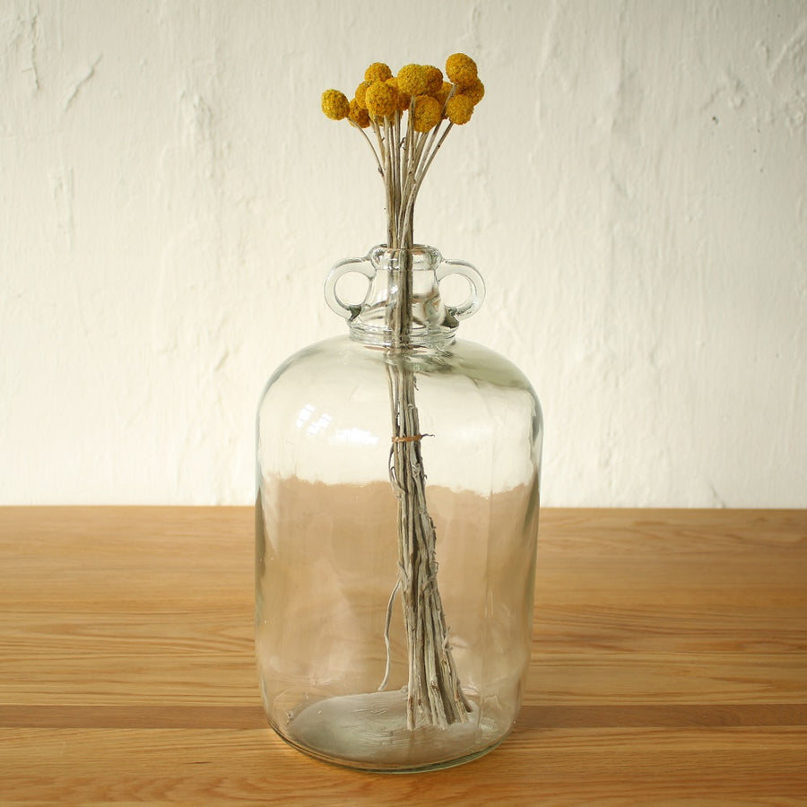 Large Vintage Glass Bottle Vase - Staunton and Henry