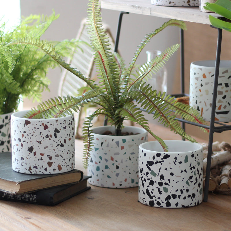 Terrazzo Pattern Plant Pots - Set of 4 - Staunton and Henry