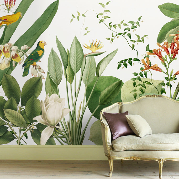 Birds Of Paradise Tropical Wall Mural Staunton And Henry