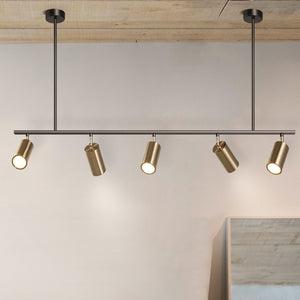 Modern Brass Hanging Track Lights