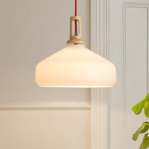 Frosted Beaker Pendant Light