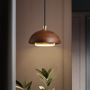 Dark Wood Pendant Light