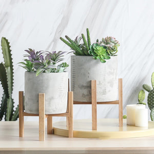 Modern Concrete Plant Pot With Wood Stand