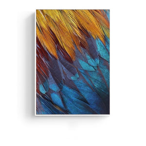 Feathers Photographic Wall Art with Frame - Staunton and Henry