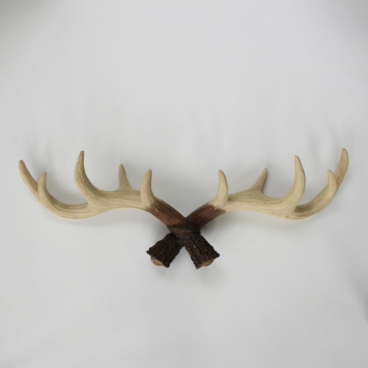 Antler Wall Hooks - Staunton and Henry