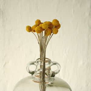 Bunch of 6 Dried Flowers - Yellow