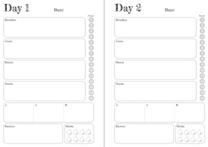 Grey Solid Stripes 8 and 12 Week Organiser Refill
