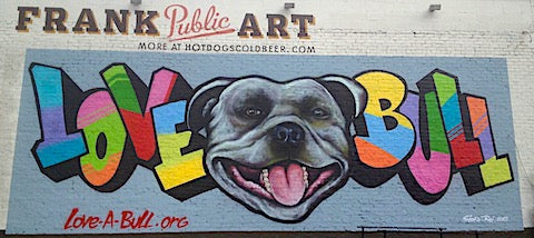 image of austin mural bull dog and graffiti