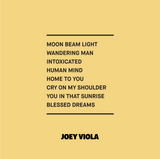 Joey Viola Music / The Leap / Volume 01 / Cover Back