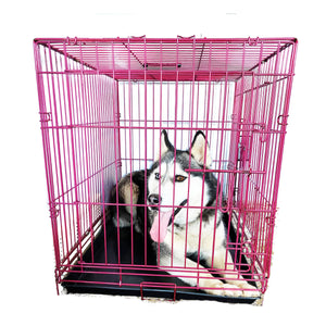 "48""Magenta Double Door Wire Dog Kennel"