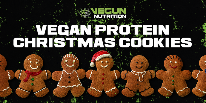 Vegan Protein Gingerbread Cookies