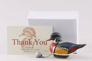 Jett Brunet AE Miniature Wood Duck