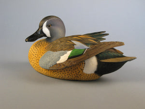 Jett Brunet Blue Wing Teal