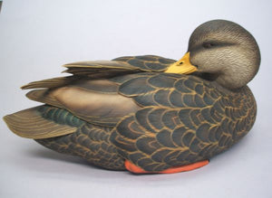 Jett Brunet Artist Edition Black Duck Drake