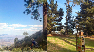 Five Great Disc Golf Destinations in Southern California