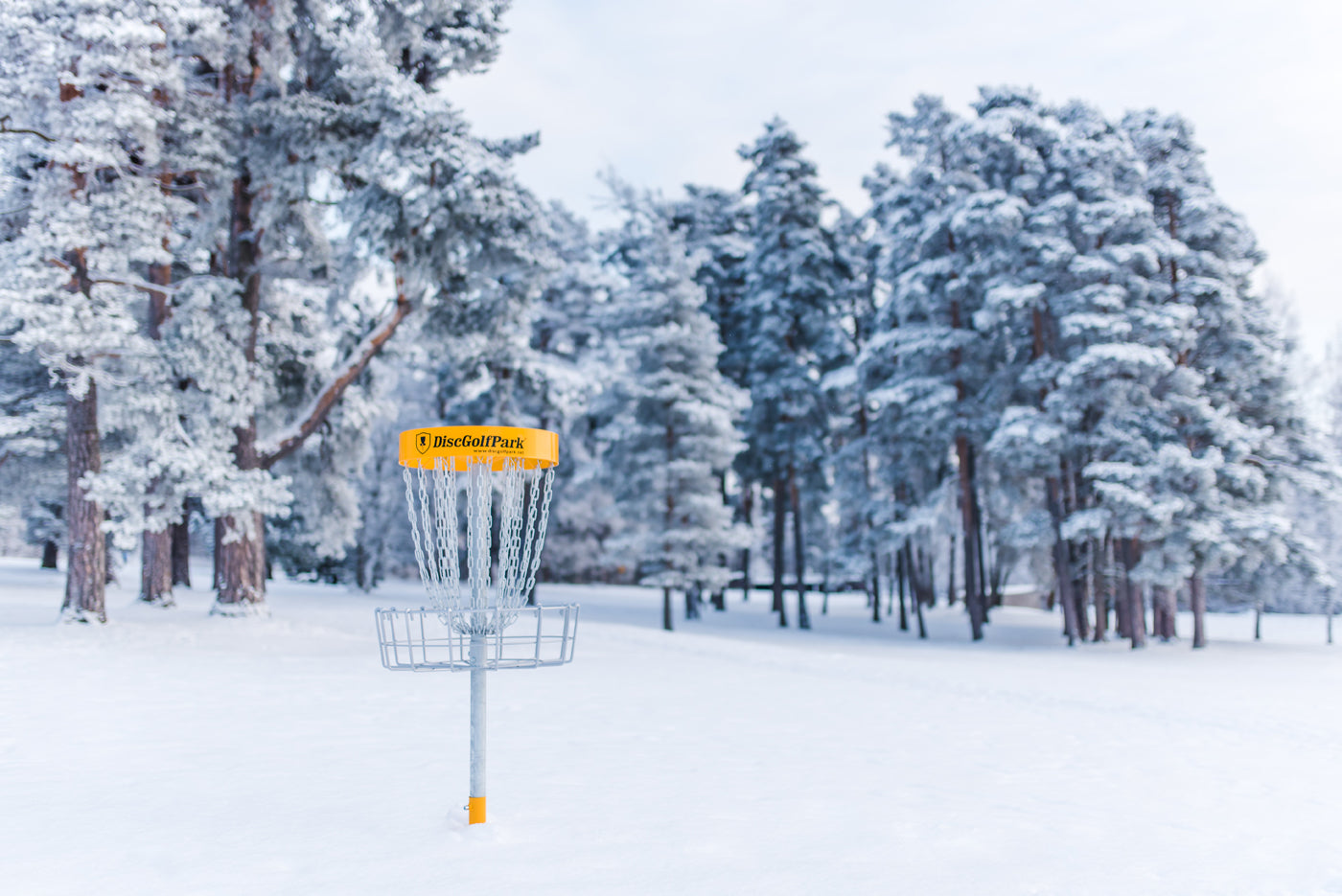 Snowy disc golf course