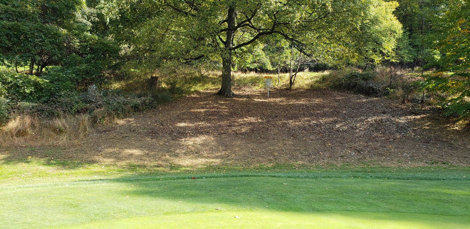 The course offers wide variety of holes and is co-designed by Simon Lizotte.
