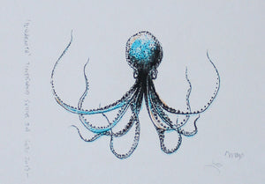 Il-Qarnita (Octopus) - (black, blue & yellow)