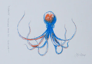 Il-Qarnita (Octopus) - (blue, orange & yellow)