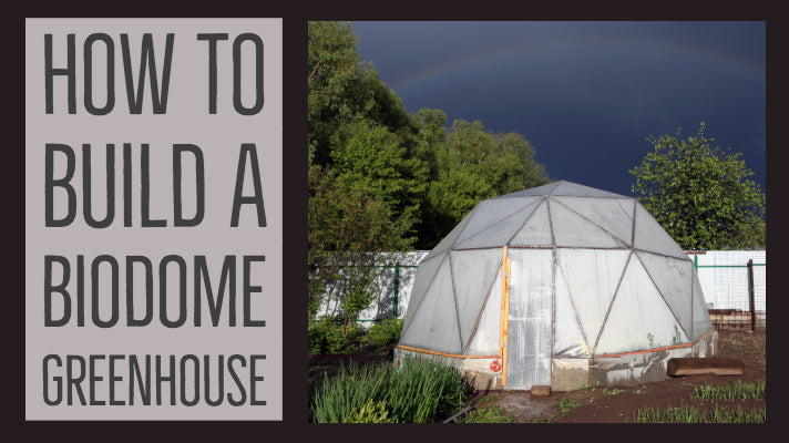 How to Build a Biodome Greenhouse?