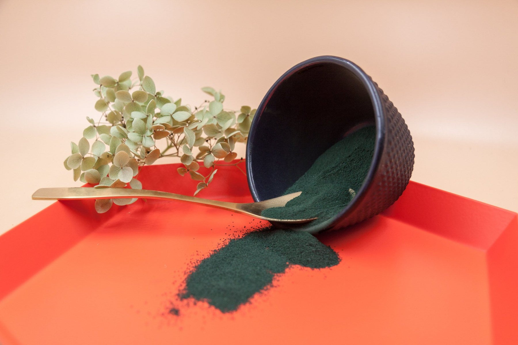 Spirulina Superfood kaufen