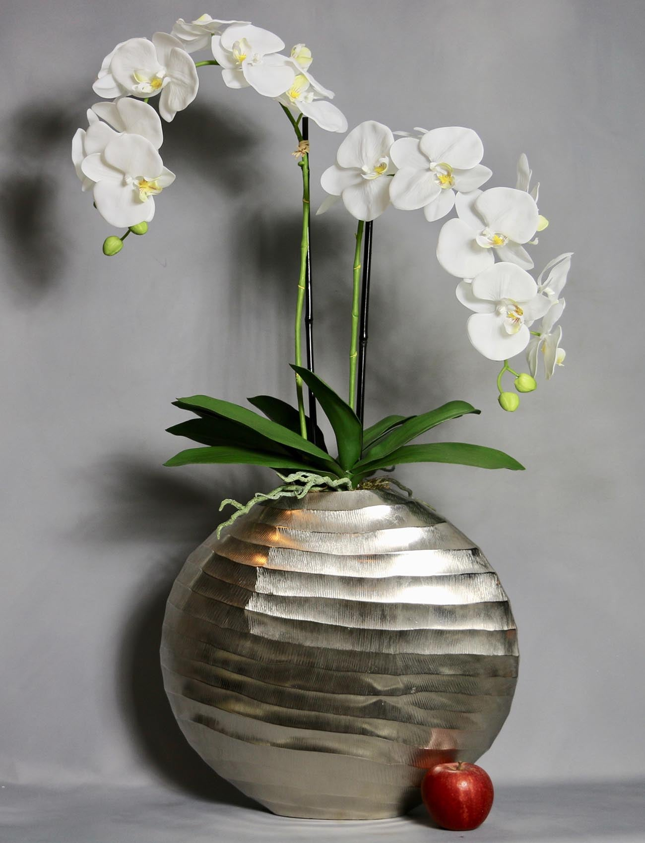 Phalaenopsis Orchids in Round Black Planter