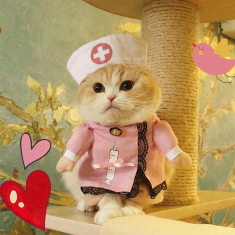 Cheapest and Best Reviews for Halloween Clothes Cat/Dog M / Nurse at trendingvip.com