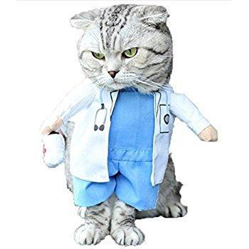 Cheapest and Best Reviews for Halloween Clothes Cat/Dog  at trendingvip.com