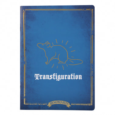 Transfiguration  class exercise book
