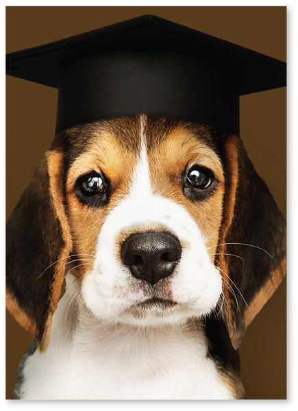 Raise the Woof Graduation Card