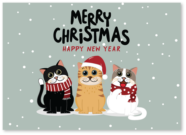 Three Cats Christmas Card