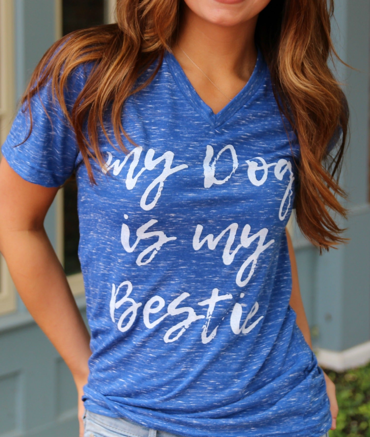 My Dog is My Bestie Blue V-Neck Top