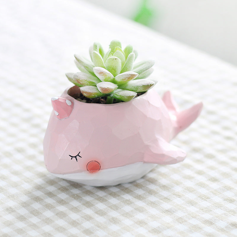 Precious Whale Planter for Plants or Succulents
