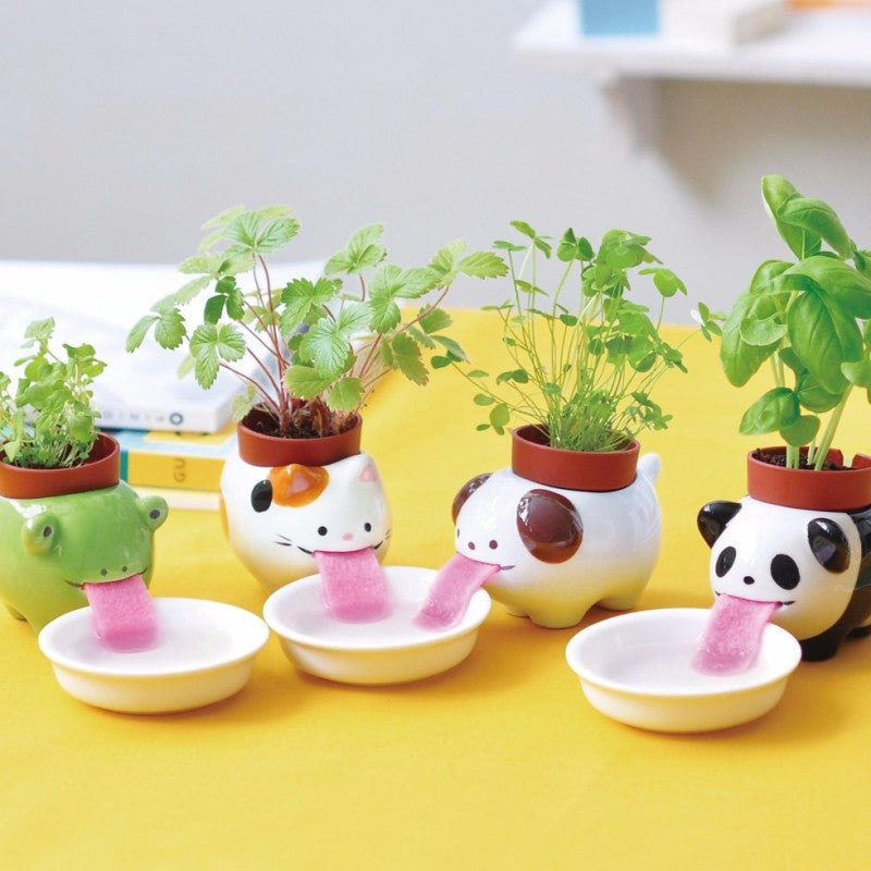 Plant Slurpers Self-Watering Flower Friends