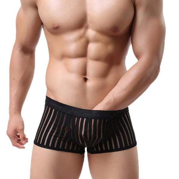 Striped See Through Underwear Boxers Transparent Boxer Shorts Lingeries BK L