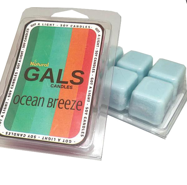 Ocean Breeze Soy Wax Melt Organic, [product_type], Got A Light Soy Candles, [variant_title]