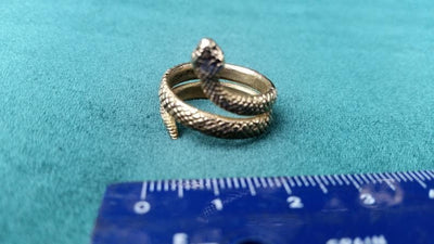 Ancient Rome Snake Tribal Ring