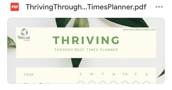 Guide to 'THRIVING THROUGH BUSY TIMES' downloadable planner