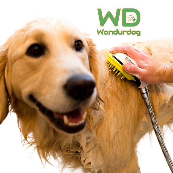 Wondurdog Indoor Dog Shower Kit
